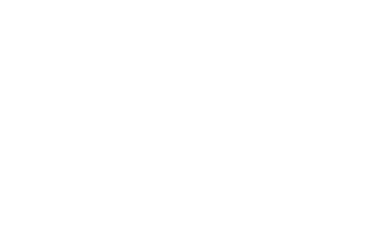 The Chandler Salon Logo